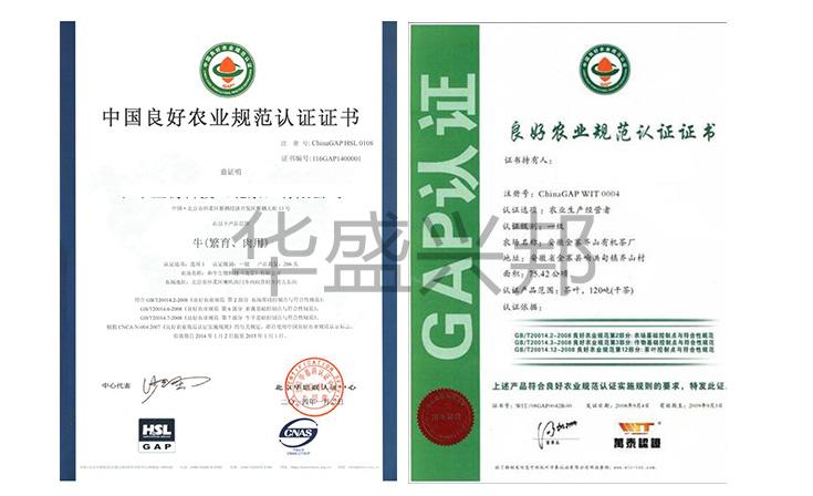 中国良好农业规范CHINAGAP服务_华盛兴邦